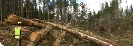 Logging Rigging Equipment